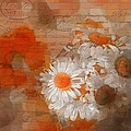 Variance Collections - Pot of Daisies 02 -...
