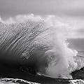 Denise Dube - Power in the Wave BW By...