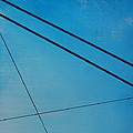 Ronda Stephens - Power Lines 11