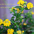Connie Fox - Psalm 118.24 Yellow...