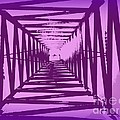 Clare Bevan - Purple Perspective