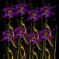 Ester  Rogers - Purple Poppies Abstract
