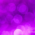 Jan Bickerton - Radiant Orchid Bokeh