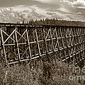 Inge Riis McDonald - Railroad Trestle