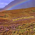 Henry Kowalski - Rainbow and Heather
