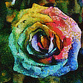 Eti Reid - Rainbow rose square...