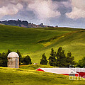 Priscilla Burgers - Red Barn and Silo in the...