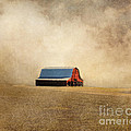 Jai Johnson - Red Barn in Missouri