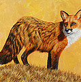 Crista Forest - Red Fox Painting -...