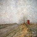 Liz  Alderdice - Red Phone Box