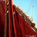 Lainie Wrightson - Red Sails