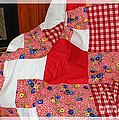 Barbara Griffin - Red White and Gingham...