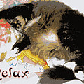 Heidi Manly - Relax Cat