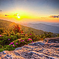 Jason Penland - Rhododendron Sunset