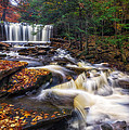 Mark Papke - Ricketts Glen Oneida...