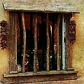 Barbara Chichester - Ristra Window