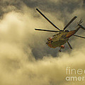 Terri  Waters - RNAS Culdrose Search and...