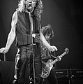 Timothy Bischoff - Robert Plant and Jimmy...
