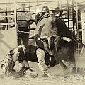 Bob Christopher - Rodeo Prepared To Be...