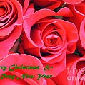 Barbie Corbett-Newmin - Rose Lovers Christmas...