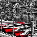 Kaye Menner - Row of Red Rowing Boats