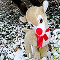 Ed Weidman - Rudolph The Red Nosed...