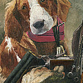 Mary Ellen Anderson - Rusty - A Hunting Dog