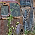 Liane Wright - Rusty Vintage Ford Panel...