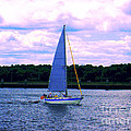 Annie Zeno - Sail Boat With An...