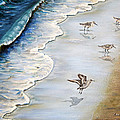 Zulfiya Stromberg - Sandpipers on the beach