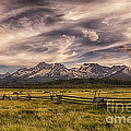 Priscilla Burgers - Sawtooth Mountains