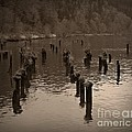 Chalet Roome-Rigdon - Sepia Pilings