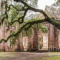 Dawna  Moore Photography - Sheldon Church Ruins...