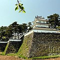 Yumi Johnson - Shimabara Castle