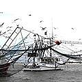 Travis Truelove - Shrimpers at Work - Boat...