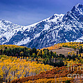 Gary Whitton - Sneffels Range Fall...