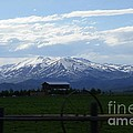Photography Moments - Sandi - Soldier Mountain - Camas...
