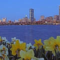 Juergen Roth - Spring into Boston
