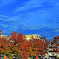 Luther Fine Art - St. Louis -  Blue Sky In...