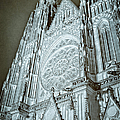 Joan Carroll - St Vitus Cathedral Rose...