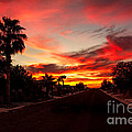 Robert Bales - Street Southwest Sunset