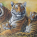 Hukam Chand Wildlife artist - Strength and Innocence