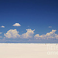 Roena King - Summer at White Sands...