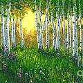 Michael Swanson - Summer Birch 24 x 48