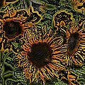 Pamela Cooper - Sunflower 18