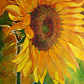 Irina Effa - Sunflower