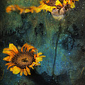 James Bethanis - Sunflowers in night sky