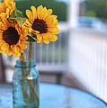 Terry DeLuco - Sunflowers on The Porch