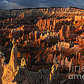 Sandra Bronstein - Sunrise at Bryce Canyon