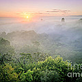 Jola Martysz - Sunrise in Tikal